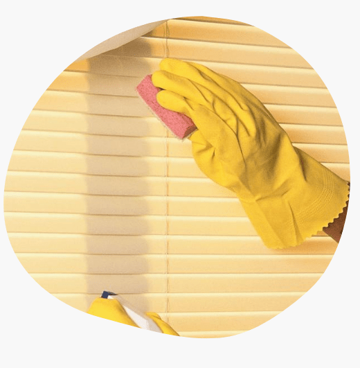 Professional Curtains and Blinds Cleaners Buderim